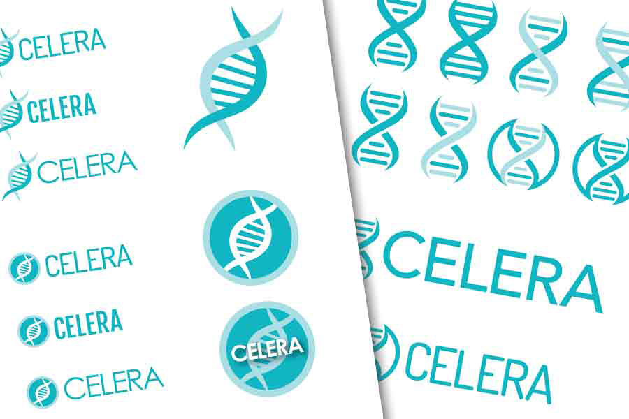 Computer rendering exploration of the CELERA logo designs.